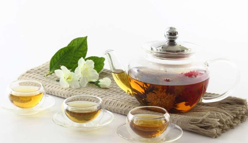 что полезнее иван чай или зеленый чай